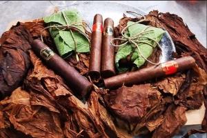 Elitna linija: Sanja Lopar izbacila šestu liniju cigara
